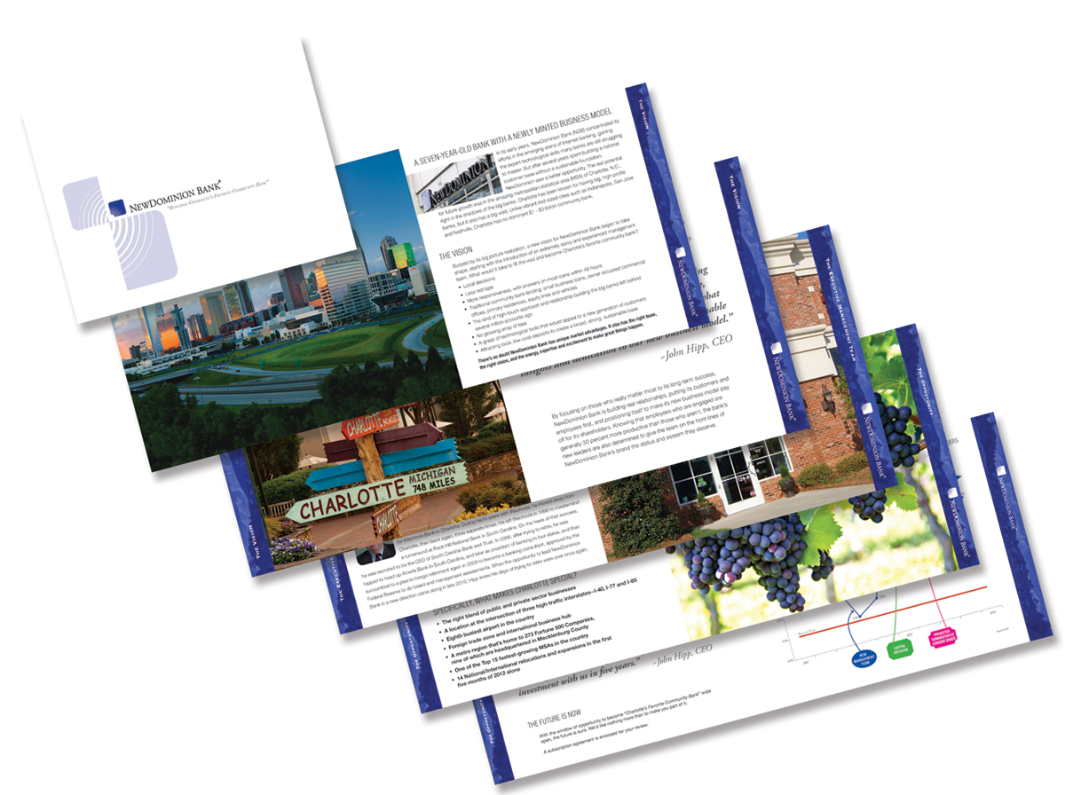 NewDominion Bank Brochure